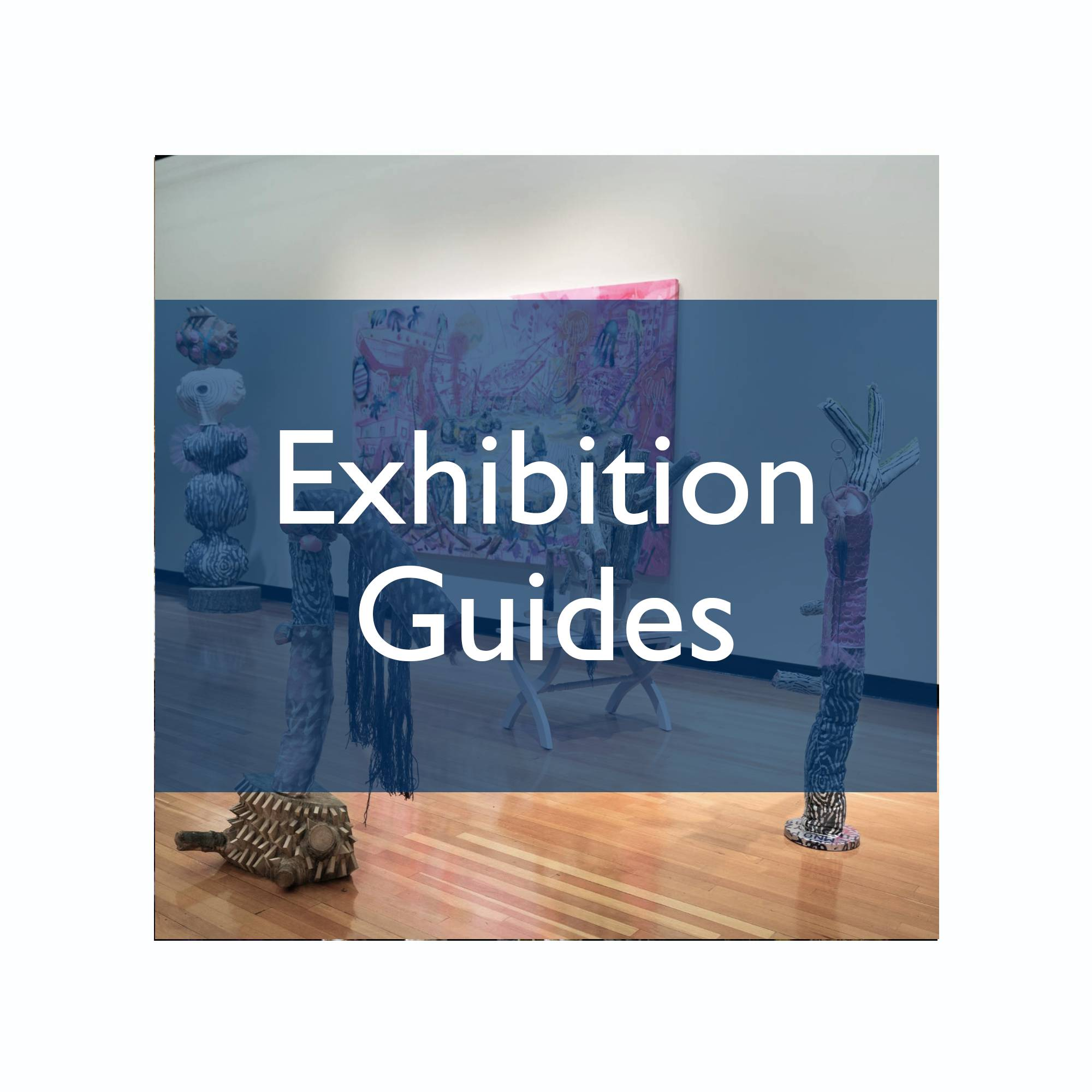 "the GVSU PAC gallery with the text, ""Exhibition Guides"" over top"